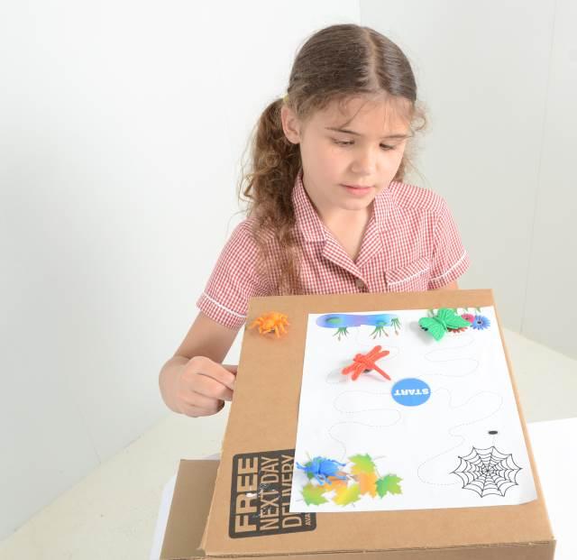 Magnetic mini beast maze