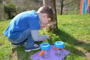 Minibeast hunt - outdoor play
