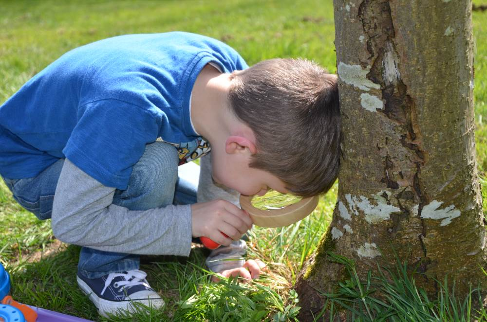 Mini beast hunt- Outdoor play
