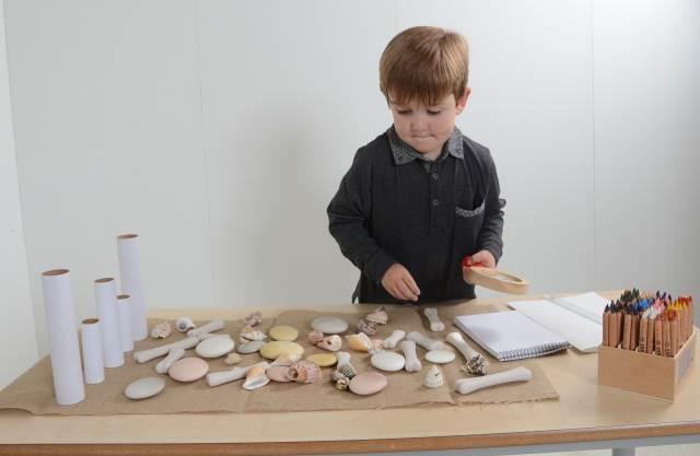 Dinosaur Bone Investigation Table