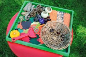 sensory tray- autumn