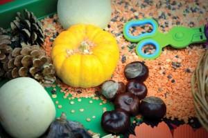 autumn sensory play