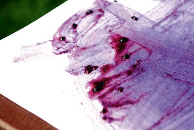 blackberry paint