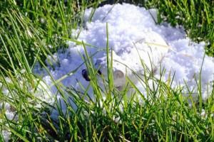 EYFS snow trail activity