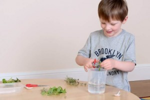 early years sensory exploration
