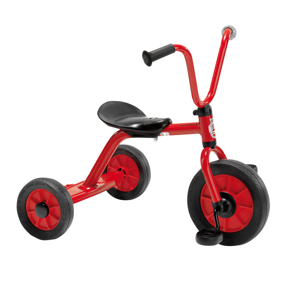 Tricycle with Rear Step