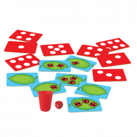 Ladybird Counting Game