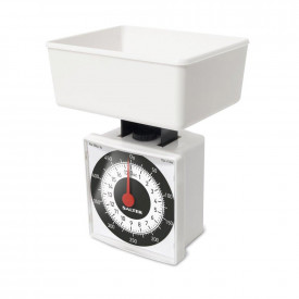 Salter Compact Dial Scale