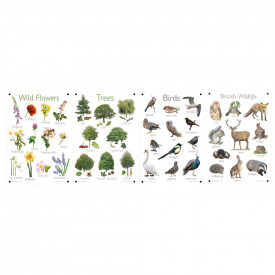 A3 Nature Outdoor Learning Boards