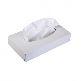 Man Size 2 Ply Facial Tissues