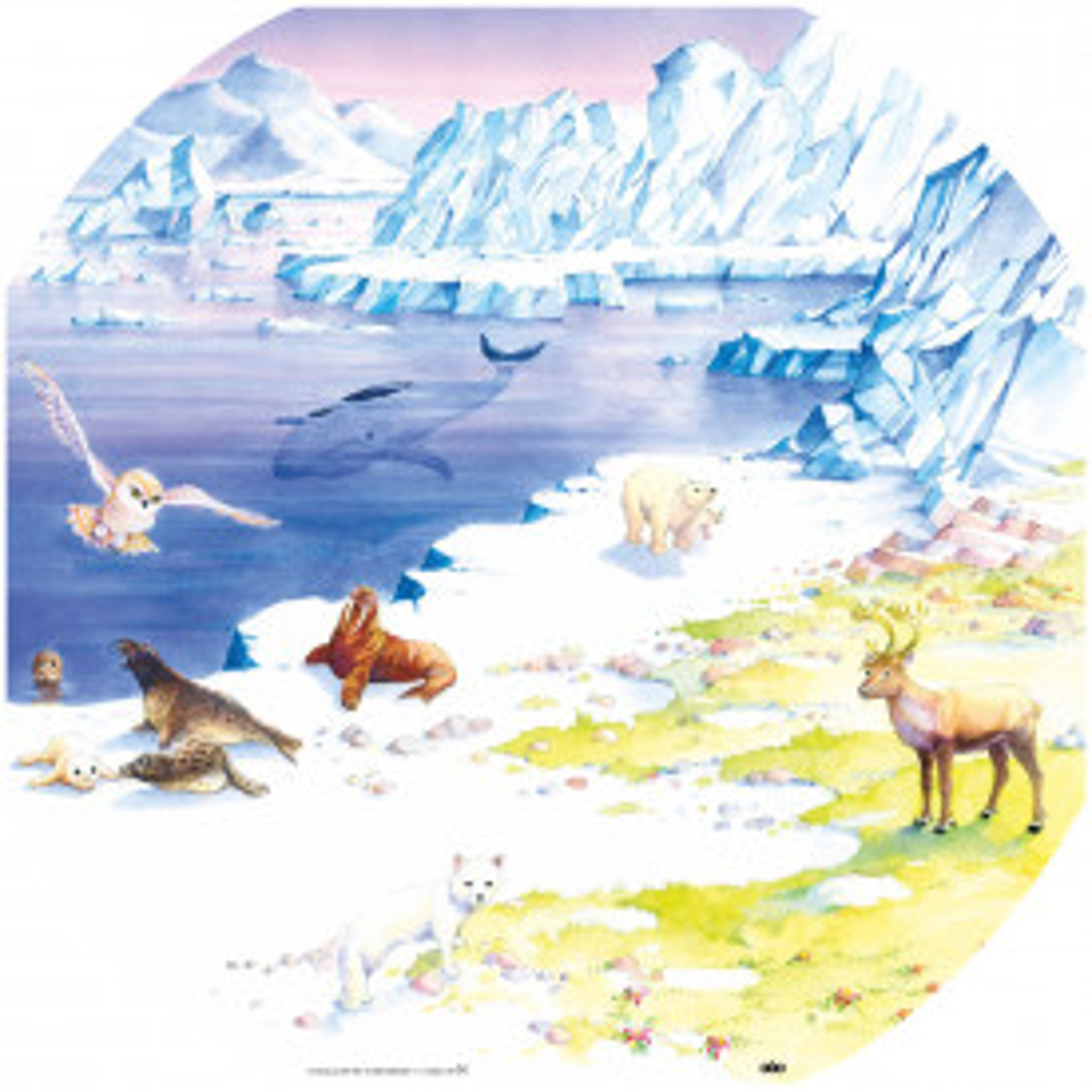 Active World Arctic Mat