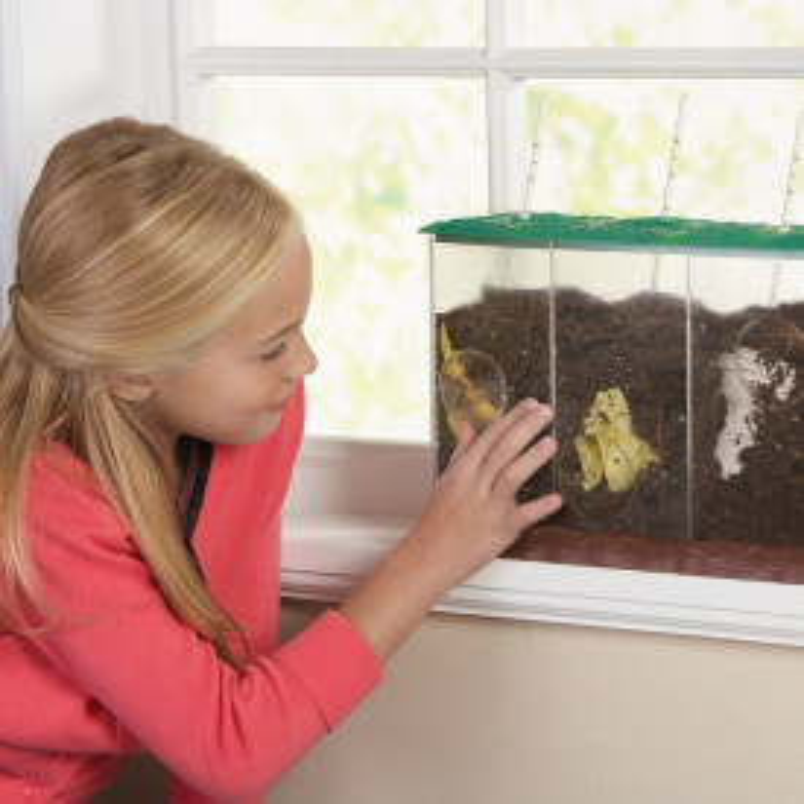 Composting Demonstration Box
