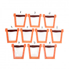 Sow it and Grow it Plant Pots Pack
