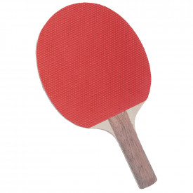 Starter Table Tennis Bat Pimples Out