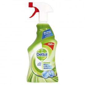 Dettol® Mould & Mildew Remover