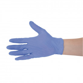 Blue Vinyl Powder Free Gloves