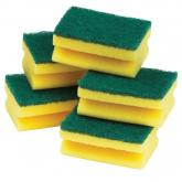 Scourers & Cleaning Accessories